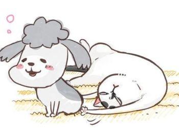 Inu to Neko Docchimo Katteru to Mainichi Tanoshii 350x250 Manganetworks   Tin tức Anime & Manga